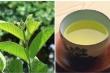 Sự thật về 'thần dược' trà lá ổi chống ung thư, hỗ trợ chữa tiểu đường