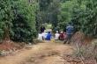 Tá hỏa phát hiện 3 cha con chết trong chòi rẫy cà phê ở Đắk Nông