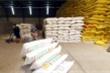 Điểm danh 24 doanh nghiệp 'bùng' bán gạo dự trữ quốc gia