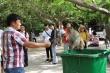 Ảnh: Hàng trăm con khỉ kéo về chùa Linh Ứng 'xin ăn' gây phiền toái