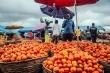 Sản lượng dầu sụt giảm, nền kinh tế lớn nhất châu Phi suy thoái