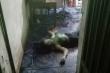 Điều tra vụ án mạng thương tâm ở Bình Phước