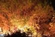 Hàng trăm người căng mình trong đêm, dập cháy rừng ở Hà Tĩnh
