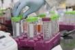 Phát hiện biến chủng SARS-CoV-2 mới tại Mỹ