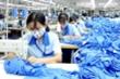 85% vải phục phục vụ cho ngành dệt may phải nhập khẩu từ nước ngoài