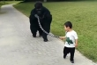 Video: Cha hóa trang thành khỉ đột để con dắt đi chơi