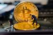 Giá Bitcoin hôm nay 24/1: Bitcoin tiếp tục đi lùi, thị trường phân hóa sâu sắc