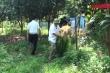 Video: Đột kích vườn cây cần sa của người đàn ông Pháp ở bãi giữa sông Hồng