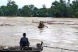 Bất chấp nguy hiểm, người Hà Tĩnh liều mình vớt củi trên sông Ngàn Phố