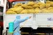 Hỗ trợ tiêu thụ nông sản cho nông dân vùng dịch
