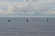 Tàu chiến Mỹ, Nhật, Australia tập trận trên Biển Đông