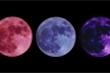 Chọn mặt trăng đẹp nhất để biết tương lai gần của bạn
