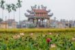 Video: Du khách ngỡ ngàng trước vẻ đẹp của đầm sen nở rộ tại Quảng Nam