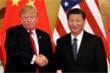 Chủ tịch Tập Cận Bình điện đàm Tổng thống Trump, nhắc Mỹ hành xử hợp lý để đối phó dịch corona