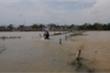 Truyền thông quốc tế: Người Việt tương thân tương ái trong bão lũ