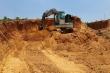 Lén lút đào trộm đất rừng bán vào công trình nhà nước thu lợi bất chính
