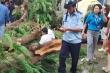 Khoảnh khắc cây đè trúng nhiều học sinh ở TP.HCM qua lời kể nạn nhân