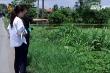 Hưng Yên: UBND xã thu hồi đất của gia đình liệt sĩ gây bức xúc