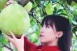 Tiên nữ đồng quê Lý Tử Thất phản bác thông tin thu nhập 'khủng'
