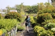 Giới trẻ rần rần check in vườn hoa Sa Đéc vạn người mê ở Đồng Tháp
