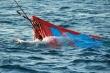 Truy tìm tàu hàng đâm chìm tàu cá Quảng Nam, bỏ mặc 6 ngư dân giữa biển
