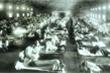 Cúm Tây Ban Nha - đại dịch tồi tệ nhất lịch sử thế kỷ XX, giết chết hơn 50 triệu người