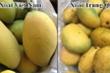 Cách phân biệt 5 loại trái cây Trung Quốc với hàng Việt Nam