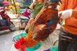 Nghỉ Tết dương lịch: Giá thịt lợn, gà đua nhau 'nhảy múa'