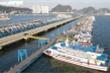 Ảnh: Cận cảnh hơn 500 tàu du lịch nằm 'ngắc ngoải' bên bờ Vịnh Hạ Long