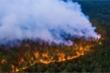 Cháy rừng thảm khốc đang thiêu hủy nhiều khu vực ở Siberia