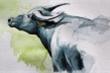 Tử vi hôm nay 6/10 của 12 con giáp: Tuổi Sửu gặp rủi ro về tài chính