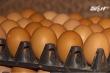Chọn và bảo quản trứng gà đúng cách