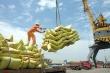Hơn 53.000 tấn gạo xuất khẩu bị huỷ tờ khai hải quan