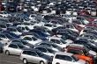 Gần 560 ô tô nhập khẩu mỗi ngày, hơn một nửa xe Thái Lan
