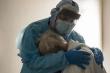Khoảnh khắc bác sỹ Mỹ an ủi cụ ông mắc COVID-19 gục khóc gây bão