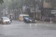 Ảnh: Hà Nội đón 'mưa vàng' giải nhiệt sau chuỗi ngày nắng nóng gay gắt