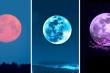 Chọn một mặt trăng bạn sẽ nhận được lời tiên đoán cho tương lai