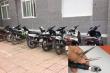 Khởi tố 7 kẻ liên quan đường dây trộm cắp, tiêu thụ xe máy ở Nghệ An