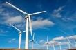 Tạm dừng xem xét thẩm định bổ sung quy hoạch các dự án điện gió