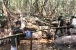 Người giữ rừng Tây Nguyên kể chuyện đấu trí với kẻ phá rừng sẵn sàng đổ máu