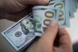Tỷ giá USD hôm nay 12/11: USD hồi phục từ đáy