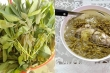 Canh rau sắn chua nấu cá - Đặc sản bình dị của người dân đất Tổ Vua Hùng