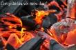 Đố mẹo 5 giây: Con gì ăn lửa với nước than?