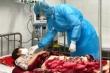 Bệnh nhân nhiễm virus corona ở Thanh Hóa được ra viện