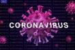 Video: Mỹ đang nhân giống nhiều mã gen virus corona