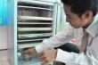 Người 'phù phép' những chiếc tủ lạnh hỏng thành máy ấp trứng
