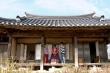 Ngôi làng 500 tuổi của giới quý tộc ở xứ kim chi
