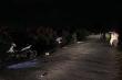 Ô tô đâm hàng loạt xe máy trong đêm, 9 người bị thương ở Hải Dương