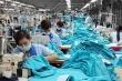 EVFTA được thông qua: Doanh nghiệp háo hức nhưng thận trọng