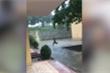 Clip: Chàng trai ngã như xiếc khi chạy trú mưa